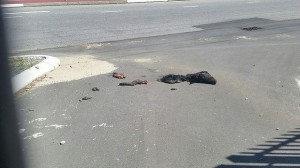 Severed head of a pig and its body parts scattered in front of the Mosque.  Photo: Sheikh Shabir Adam Moosa